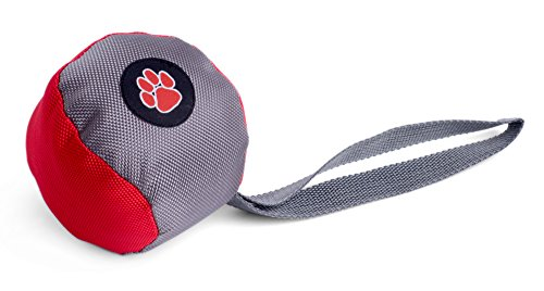 Outdoor Paws Toss Jouet pour Chien Balle