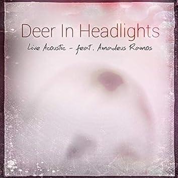 Deer in Headlights (feat. Amadeus Ramos)