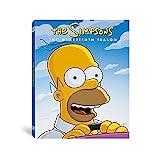Simpsons: Season 19 (4 Dvd) [Edizione: Stati Uniti] [Italia]