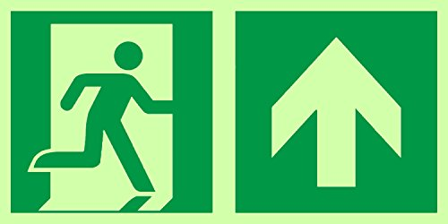 Anro Warnschild für Notausgang E002/5 | Nachleuchtendes PVC Sicherheitsschild Fluchtweg | Selbstklebend Rettungsweg-Schild für Betriebe, Produktion & Kliniken | Farbe: Grün