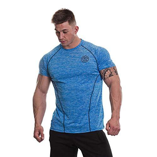 Gold's Gym Herren Workout Training Kurzarm Tee Raglanärmel Performance Marl Raglanärmel T-Shirt XXL Blue Marl