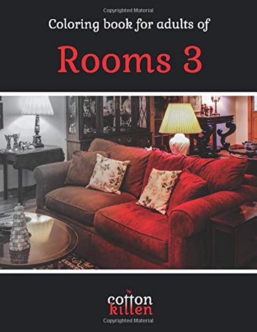 犯す危機ポスト印象派Coloring book for adults of Rooms 3: 49 of the most beautiful grayscale rooms for a relaxed and joyful coloring time