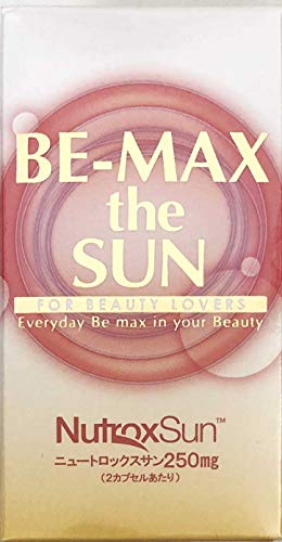 BE-MAX the SUN(ビーマックス ザ・サン)