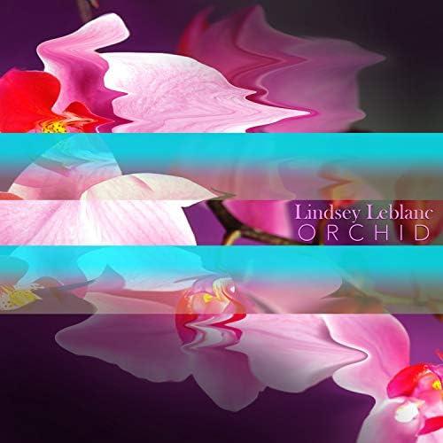 Lindsey Leblanc