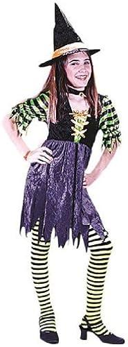 mejor calidad mejor precio Morris Morris Morris Costumes Fairy Tale Witch Small by Morris Costumes  Seleccione de las marcas más nuevas como