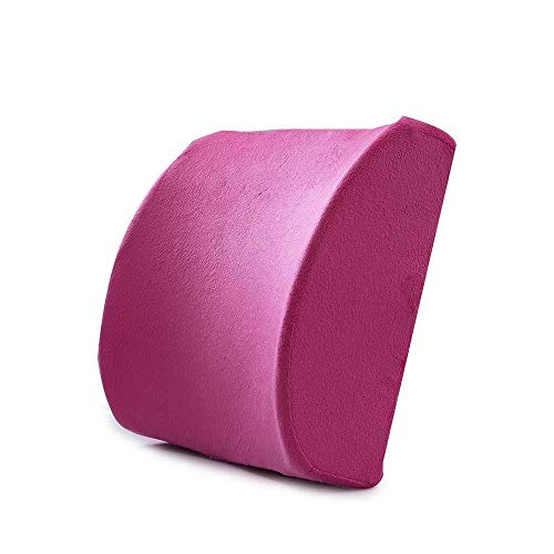 Tia Lendenkissen Rückenkissen 3D Mesh Lendenwirbelsäule Stützkissen, Rückenstütze Geeignet Für Bürostuhl, Stuhllehne Und Verstellbares Rückenstützkissen
