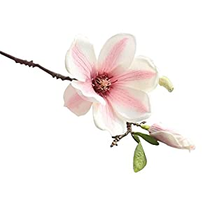 preliked 1 Pc Artificial Magnolia Flower Bud Bridal Wedding Home Cafe Store Decor Fake Flower Gift (White+Pink)