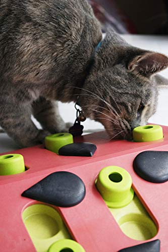 Product Image 9: Petstages Nina Ottosson Melon Madness Puzzle & Play – Interactive Cat Treat Puzzle
