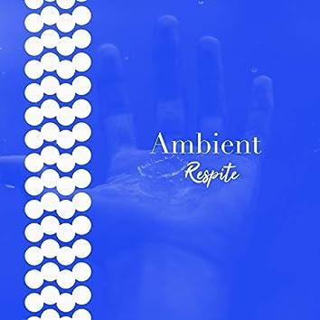 # 1 Album: Ambient Respite