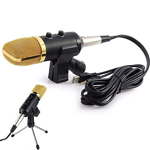 Microfone Condensador Usb Estudio Bm100Fx 648 - Lorben
