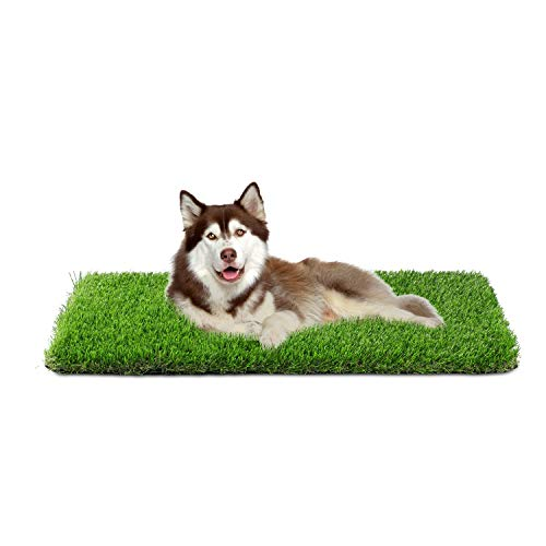 outdoor potty pad for dogs