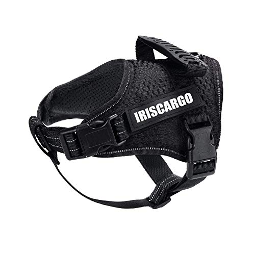 IrisCargo Hundegeschirr einstellbar Atmungsaktives Haustier Brustgeschirr sicher Kontrolle bequem Hunde Geschirr für Hunde Haustier Hundetraining oder Walking (XL)