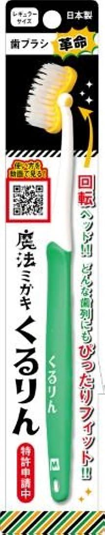 波帰するスタッフ歯ブラシ革命 「魔法ミガキくるりん」 グリーン × 10個セット