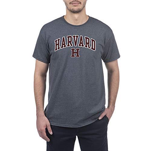 Elite Fan Shop Harvard Crimson Men's Short Sleeve Charcoal Gray Arch Tee, Medium