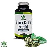 VITAL24 - Grüner Kaffee Extrakt - Fatburner der VIPs - 90 hochdosierte Kapseln - starke Konzentration an Chlorogensäure