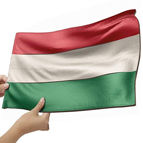 Ungarn Flagge als Lampe aus Holz - schenke deine individuelle Ungarn Fahne - kreativer Dekoartikel aus Echtholz