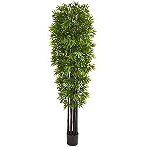 Nearly Natural 7' Bamboo Artificial Black Trunks UV Resistant (Indoor/Outdoor) Silk Trees Green
