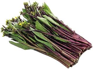 Kosaitai Raab - Brassica Rapa VAR Purpurea Seeds