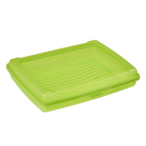 keeeper Click-Box, Grün, Mini (500 ml)