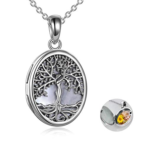 YAFEINI Locket Necklace That Holds Pictures Sterling Silver Tree of Life Locket Necklace Mother of Pearl Shell Family Tree Pendant Jewelry for Women