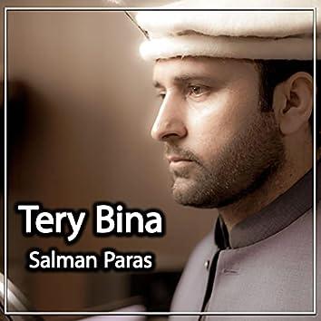Tery Bina (feat. Salman Paras)