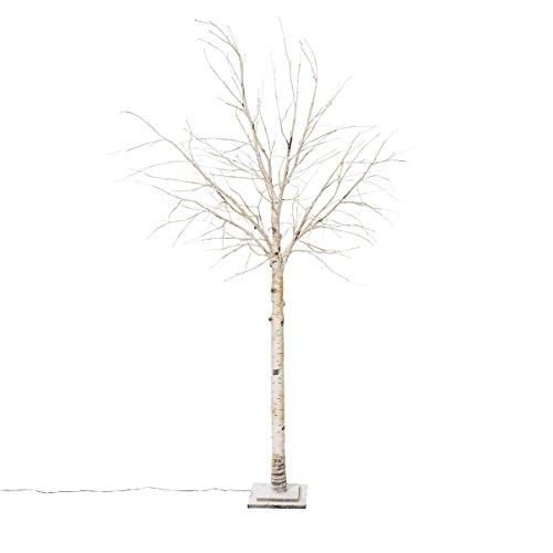Pureday Weihnachtsdeko - LED Baum Birke Crema - Mit 132 LEDs - Höhe ca. 200 cm