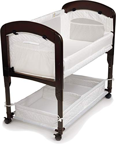 Arm's Reach Concepts Cambria Bassinet Product Image