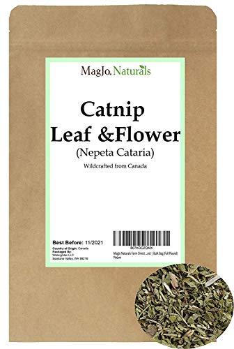 MagJo Naturals Farm Direct Catnip   Freshest Available   Bulk Bag (Full Pound)