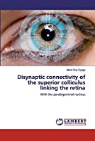 Disynaptic connectivity of the superior colliculus linking the retina
