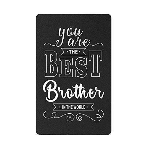 Brother Gift from Sister – You are the Best Brother in the World, Brother Funny Wallet Card Christmas Birthday Gifts for Brother