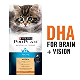 Purina Pro Plan High Protein Dry Kitten Food, FOCUS Chicken & Rice...