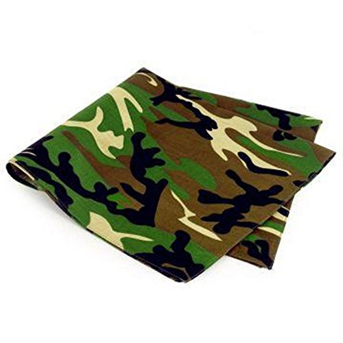Unbekannt Bandana Kopftuch Halstuch Nickituch Biker Tuch Motorad Tuch verschied. Farben Paisley Muster, Green, 54 X 54 cm