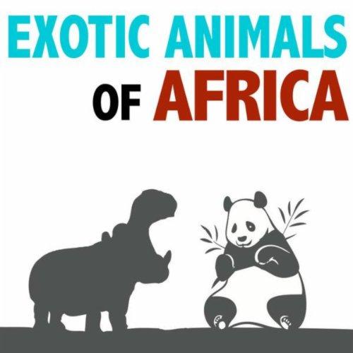 African Buffalo - Short Snort
