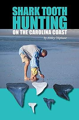 Shark Tooth Hunting on the Carolina Coast