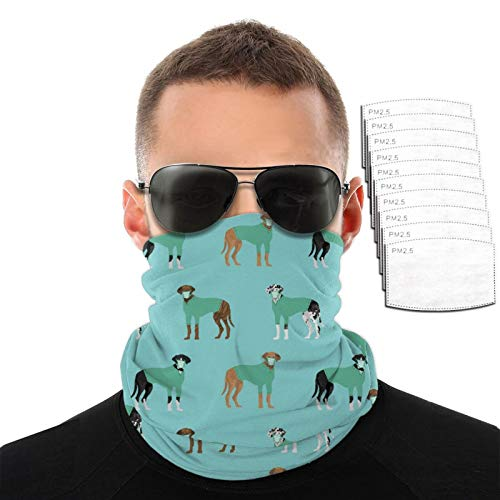 Srtgsyhrt Great Dane Mask Breathable Variety Face Towel Filters Head Scarf Mouth Cover Anti Dust Neck Gaiter Outdoor with 2/6/10 Filter