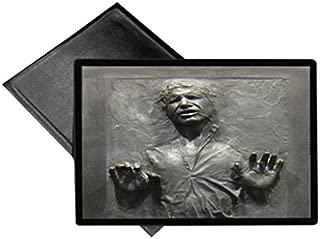 Carbonite Print Welcome Mat 18x24 Outdoor Doormat Rug