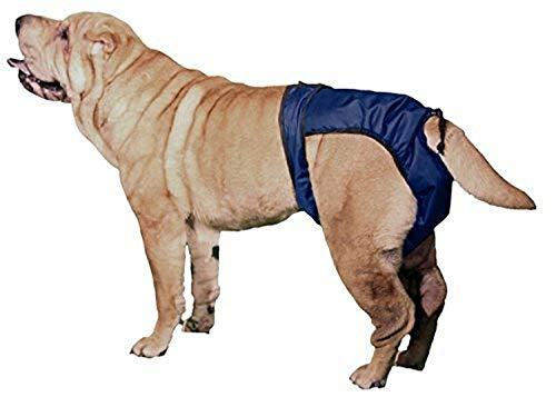 SnuggEase Washable Protective Pants Diapers for Dogs & Cats (2 pack), Medium