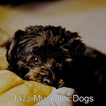 Music for Dogs at Home