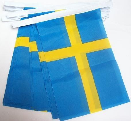 AZ FLAG Guirlande 6 mètres 20 Drapeaux Suède 21x15 cm - Drapeau suédois 15 x 21 cm