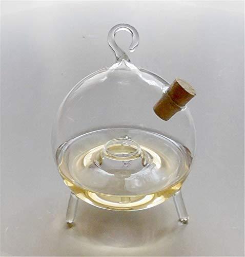 Fliegenfalle Obstfliegenfalle Fruchtfliegenfalle Glas 8 cm zum Stellen und Hängen