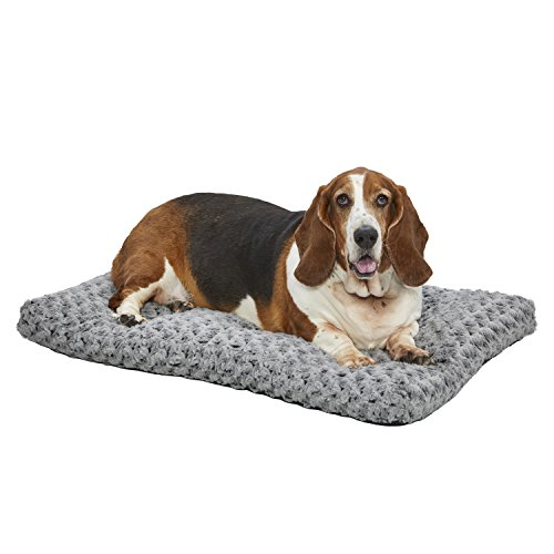 MidWest Homes for Pets Deluxe Dog Bed