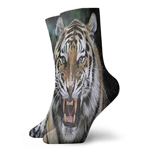 Tommy Warren Sportsocken Classic Laufsocken,Tigergesicht mit brüllender Wildtiersafari Savannah Animal Nature Zoo Photo Print,Komfort Crew Socken Unisex Sneaker Socken