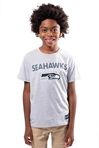 Ultra Game NFL Seattle Seahawks Youth Active Crew Neck Tee Shirt, Heather Gray, 8