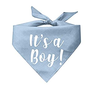 It's A Boy Or It's A Girl Gender Reveal/Baby Announcement Dog Bandana