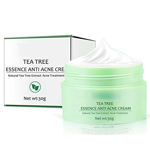 Crème de traitement de l'acné, crème de traitement de l'acné Essence de théier, crème éliminant l'acné pour éliminer l'acné sévère, éruptions cutanées, boutons de dissolvant