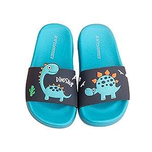 Zapatos de Playa y Piscina para Niña Niño Chanclas Sandalias Mujer Verano Antideslizante Zapatillas casa Hombre Zapatillas de Animal (Azul, Numeric_27)