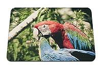 26cmx21cm マウスパッド (色とりどりのオウムコンゴウインコ鳥) パターンカスタムの マウスパッド