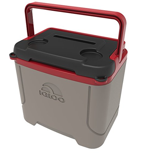 Igloo Profile – Best Value Cooler