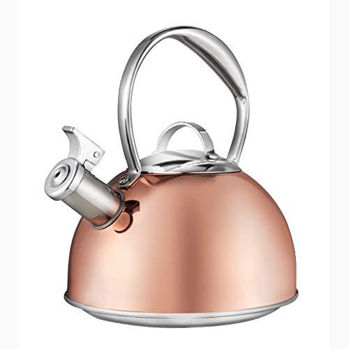 LCFF Bouilloire de santé de sifflet automatique de cuiseur de gaz de cuisine à la maison 304 d'acier inoxydable de cuisinière à induction (Couleur : A)