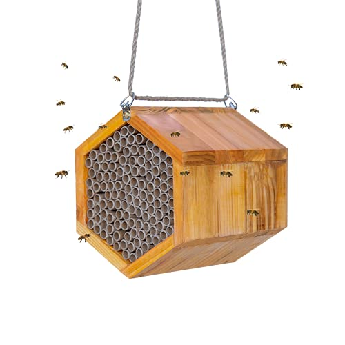 POLLIBEE Mason Bee House - Handmade Natural Wooden Bee Hive Coated with Wax for Water-Proof and Long...